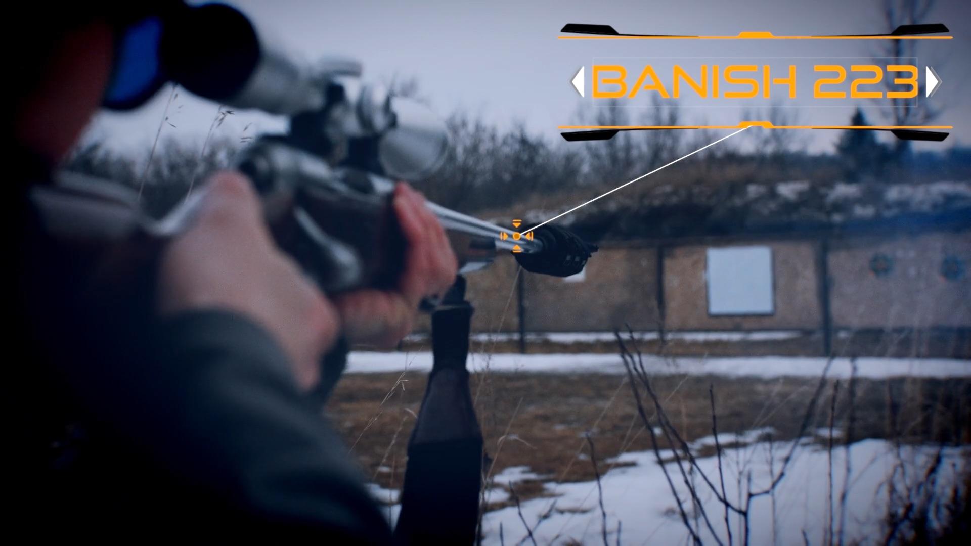 Banish 223 Suppressor