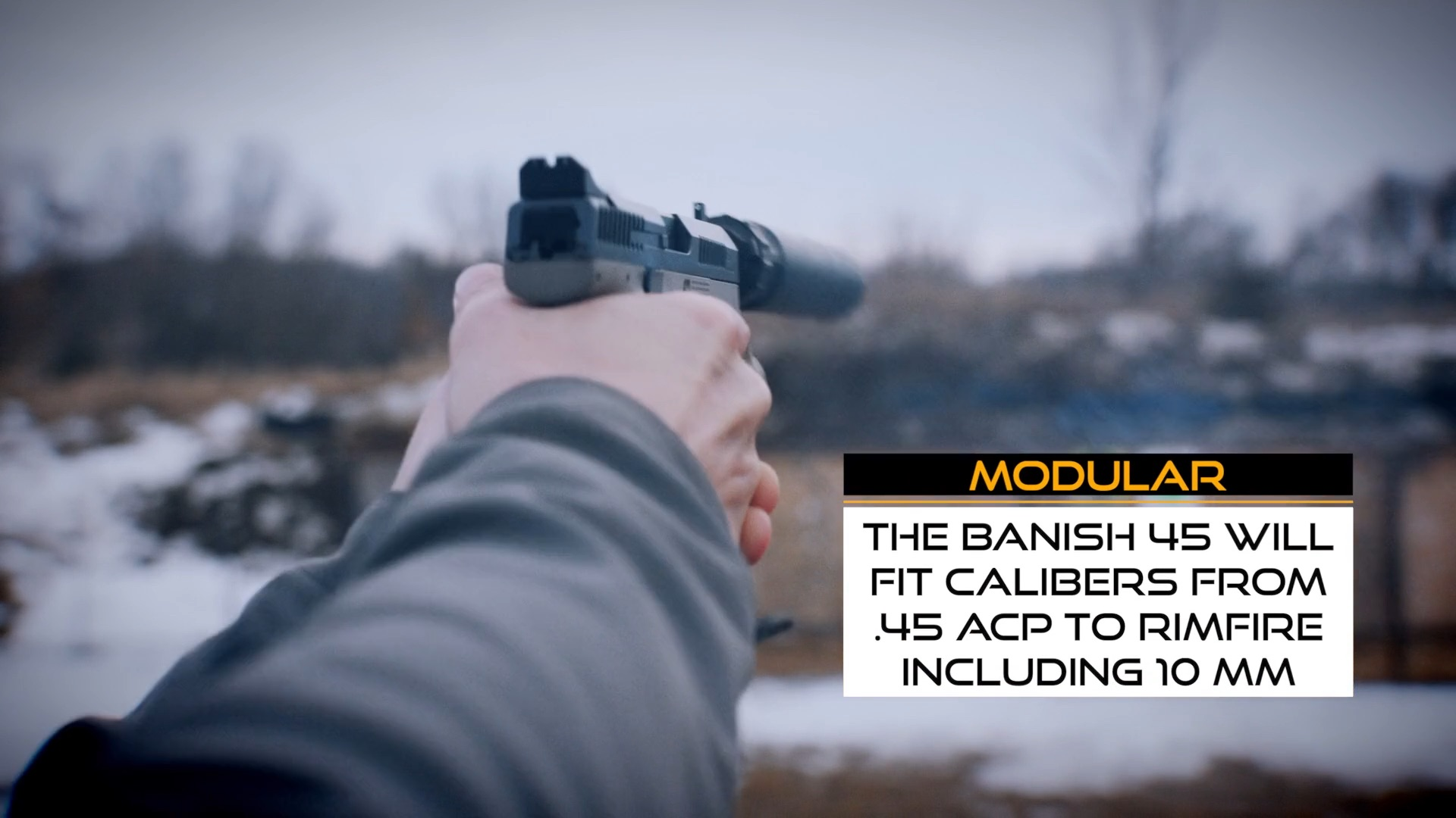 Banish 45 Suppressor