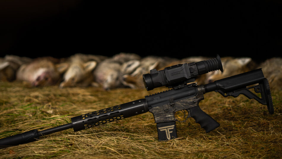 Coyote Hunting: Strategies for Success
