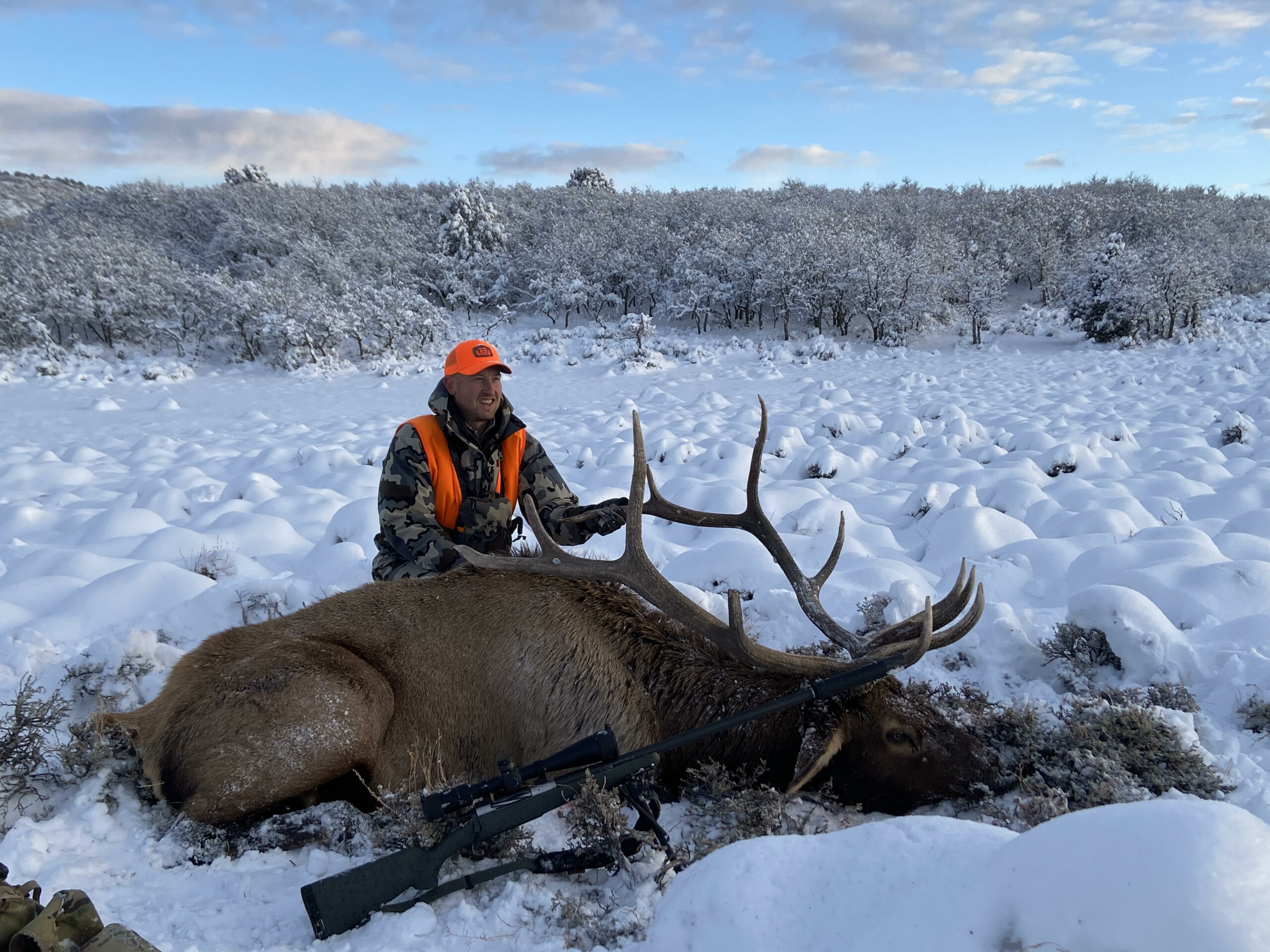 Elk Anatomy: Where to Aim for Lethal Shots