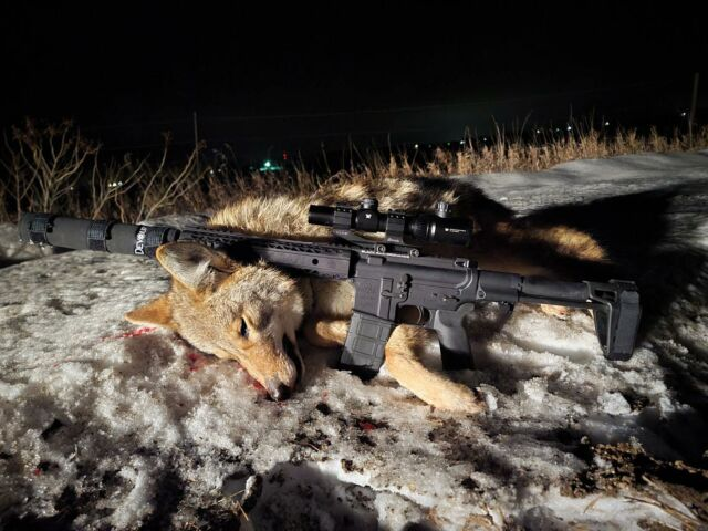Another day, another successful predator hunt!  * * #hunting #pedatorhunting #coyotes #shootingsuppressed #banishsuppressors #silencercentral #suppressed_nation #huntingsuppressed #silencedelivered #coyotehunting